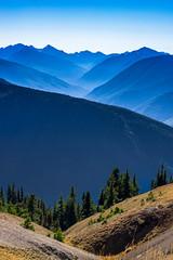 Hurricane Ridge (akibamir9) Tags: seattle washington usa america nationalparks nature outdoors olympia woods hills mountains layers blue mist autumn fall
