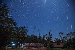 Star Trails (Ahad Shehab) Tags: noakhali bangladesh startrails astrophoto astrophotography night nightlight canon rural blue sky 5dmark2 landscape skyscape nightscape