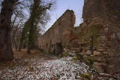 abandoned house (try...error) Tags: decay building urban wall bricks green sky abandoned urbex canon