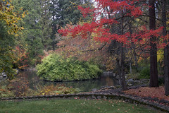Fall at a pond in the woods (Jeff Mitton) Tags: fall autumn trees pond lithiapark ashland oregon landscape fallcolors autumncolors wondersofnature earthnaturelife