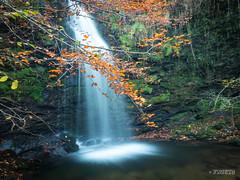 CASCADAS DE LA MIÑA (faustoreinosa) Tags: cantabria olympus efectoseda cascada otoño arboles barcenillas agua omdem1markii ruente