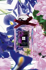 Iris and Lady Moore Cologne by Jo Malone (katalaynet) Tags: follow happy me fun photooftheday beautiful love friends