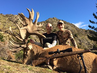 New Zealand Trophy Red Stag Hunting - Kaikoura 46