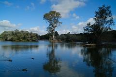 La belleza del agua (ameliapardo) Tags: estanque agua cañadadelospájaros reflejos azul cielo nubes goles verde patos naturaleza fujixt2 fujinon 1855