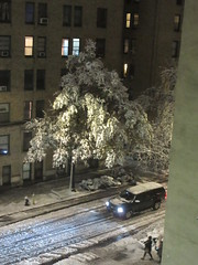 2018 November Evening Blizzard Snow Tree - Front Yard 5100 (Brechtbug) Tags: 2018 november evening blizzard snow storm front yard hells kitchen clinton near times square broadway nyc 11152018 new york city midtown manhattan snowing storms snowstorm winter weather building fog like foggy hell s nemo southern view ny1snow