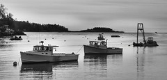 Lobster boats in Rockport Harbor.
