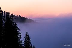 Stratus sur le bassin lémanique (MarKus Fotos) Tags: chablais bernex hautesavoie gavot stratus brume brouillard montagne mountain alpes alps auvergnerhonealpes