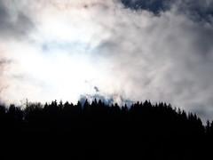 fekete erdő / black forest (debreczeniemoke) Tags: ősz autumn túra hiking hegy mountain gutin erdély transilvania transylvania táj land tájkép landscape erdő forest ég sky felhő cloud olympusem5