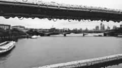 London 1 November 2018 014 (paul_appleyard) Tags: hungerford london bridge river thames water drops droplets rain november 2018 black white