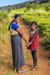 547038680 (My Dream Collection) Tags: trail tamil indianethnicity elementaryage girls teenagegirls twopeople teenager child smiling walking holdinghands indiansubcontinentethnicity asianethnicity indianculture togetherness happiness childhood frontview cheerful offspring mother parent family people nuwaraeliya srilanka india asia teacrop plantation singlelaneroad footpath
