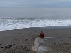 grey day Aberystwyth 4 (watcher330) Tags: aberystwyth sea beach woman hat