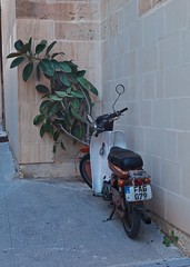 A Smoker? (alicejack2002) Tags: bike yamaha rubber plant scooter numberplate leica summicron50mm malta valletta