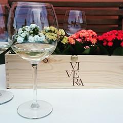 Auguri  Happy new year  #Vivera #Etna and #Sicily #organic #wines #Italy  #Linguaglossa   Info: 📧 info@vivera.it 💻 www.vivera.it  #cantine #vulcano #etnawine #etnaland #etnaDOC #winelover #vineyard #cantinaEtna #viniEtna (e.vivera) Tags: etna etnaland etnawine vinietna linguaglossa vulcano cantinaetna vivera cantine winelover sicily vineyard wines etnadoc italy organic
