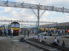 Visitors reminisce as events come to a close at Old Oak Common on 02.09.17 (Trevor Bruford) Tags: old oak common depot west london railway train diesel steam locomotive open day legends great western 66779 evening star gbrf gb railfreight 56049 colas rail freight 50007 d407 hercules sir edward elgar vac hoover ee english electric d417 50017 royal nse network southeast d426 50026 indomitable 50044 d444 exeter br blue d449 50049 defiance large logo 50050 d400 fearless