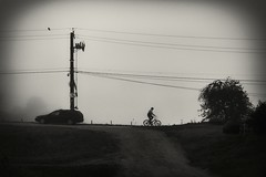 bicyclist in a mist (Pomo photos) Tags: biker bike fog mist car drive road pillar wire brown street tree man silhouette sepia grain film epl8 olympus lumix20mm blackandwhite blackwhite bw monochrome mono mood surreal art wheel bird vignette sky shadow bicyclist cycle bicycle