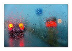 Raining (Antonio Manuel S.) Tags: canon xsi 450d 18135 raining