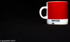 Mug Shot - 013 (gracethhh) Tags: 365 365photo 365photochallenge 3652019 e red red365 red2019 redjanuary q w t y r u o p s d f g h j k l z x c v b n m color365 colour365 january januaryred january2019 mug 2019 photochallenge2019 photochallenge