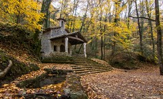 Into the forest... (Jesús Puigmartí) Tags: color nature church light forest foret bosc bosque garrotxa catalunya catalonia girona lespreses tardor autumn automne fall otoño nikon d7100 tokina manfrotto photo photographer picture image place beautiful