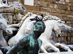 P7124837 (Igor Katalnikov) Tags: sculpture art craft statue architecture day animals creativity human history animal structure wall building past exterior bird pigeon