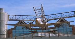 Berlin - Deutsches Technikmuseum (madbesl) Tags: berlin deutschland germany europa europe museum technikmuseum deutschestechnikmuseum flugzeug plane olympus omd em10 m10 omdem10 zuiko1250