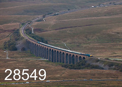 robfrance5d2_28549_290918_x55009_ribblehead_viaduct_1z82_drs_pre_edr16lr6pse15coefx4define2weblowres (RF_1) Tags: 2018 55 55009 britain british charter class55 d1825 dales delticnapier diesel directrailservices drs ee england englishelectric freight haulage hauling heritage loco locohauled locomotive locomotivehauled locomotives nucleardecommissioningauthority passengertrain preservation preserved publictransport rail railfreight railtour railroad rails railway railwayviaduct railways ribblehead ribbleheadviaduct rural sc settlecarlisle special train trains transport travel traveling uk unitedkingdom viaduct yorkshire