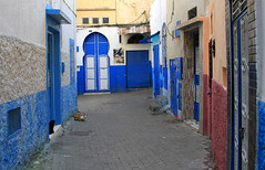 Alley in the Old Medina, Tanger (Wild Chroma) Tags: alley street morocco tanger tangier cats