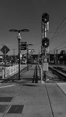 IKEX6270 (inpb) Tags: bw blackwhite california sandiego sandiegotrolley sanysidro streetphotography trolley