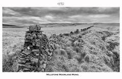 Millstone Moorland Mono. (miketonge) Tags: blackandwhite mono nik silverefexpro2 anglezarke moorland belmont wall millstonegrit