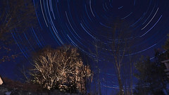 Illuminated (LEC1224) Tags: star trails sweden tree night startrails rotate light nature forest billdal göteborg gothenburg polar sky photography