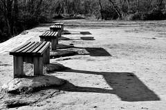 Seats (jaume zamorano) Tags: blackandwhite blancoynegro blackwhite blackandwhitephotography blackandwhitephoto bw d5500 ground lleida monochrome monocromo nikon noiretblanc nikonistas pov street streetphotography streetphoto streetphotoblackandwhite streetphotograph