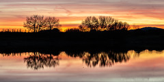 Red sunset (Ignacio Ferre) Tags: embalsedesantillana santillanareservoir manzanareselreal madrid españa spain lago lake trees árbol reflejo reflection red rojo sunset puestadesol anochecer nikon paisaje landscape naturaleza nature panorama
