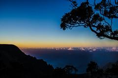 Sunset Silhouette (Stephen_Thompson7) Tags: hawaii kauai sunset silhouette sunsetsilhouette ocean pacificocean nikon d5100