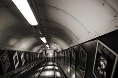 Lobotomy (Atreides59) Tags: underground london londres tunnel angleterre england reflet reflexion reflection lumière light lumières lights urbain urban escalier stairs black white bw blackandwhite noir blanc nb noiretblanc pentax k30 k 30 pentaxart atreides atreides59 cedriclafrance