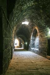 Citadel & Roman Amphitheatre - Bosra 2010 (Ralph Apeldoorn) Tags: amphitheatre citadel fort fortress roman ruin bosra daraa syrië sy
