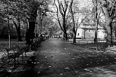 DSCF1569b_jnowak64 (jnowak64) Tags: poland polska malopolska cracow krakow krakoff planty muryobronne barbakan architektura historia jesien mik bw