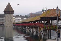 Kapellbrücke (Weingarten) Tags: schweiz switzerland svizzera suisse luzern lucerne grauersonntag dimanchemaussade domenicauggiosa lucern greysunday reuss kapellbrücke brücke bridge pont ponte