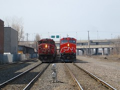 Stopped by the crossing (Michael Berry Railfan) Tags: cn canadiannational montreal montrealsub sthenri train cn5548 cn2287 es44dc gevo sd60f
