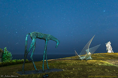 Night and Day - sculpture by the sea 2018, Bondi. (jmphotos2020) Tags: sculptureexhibit bondibeach tamaramabeach sydney nightphotography longexposure startrails sculpturebythesea