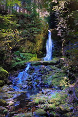 Dickson Falls, Fundy National Park, New Brunswick (klauslang99) Tags: klauslang nature naturalworld northamerica canada dickson falls fundy national parkj new brunswick water woods landscape forest