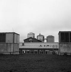 Rooftops (rotabaga) Tags: sweden sverige svartvitt blackandwhite bw bwfp göteborg gothenburg lomo lomography lubitel166 tmax400 twinlens mellanformat mediumformat 120 6x6