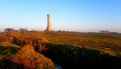 Nov 17th Cycle - Hardye's and Weymouth (Chris Belsten) Tags: