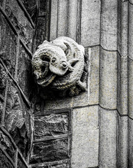 The Writhing is on the Wall (Steve Taylor (Photography)) Tags: thewritingisonthewall lizard amphibian eyes coiled writhing art sculpture building heritage corner wall monochrome blackandwhite stone newzealand nz southisland canterbury christchurch city texture