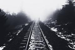 Schienenweg (Gruenewiese86) Tags: 2018 harz hütte november sony a6500 wald forest forestscape fog nebel angst tod tot geheimnisvoll mystisch mystical germany holz baum himmel landstrase