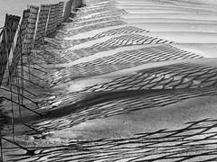 shadows in the snow (heinzkren) Tags: schwarzweis blackandwhite monochrome panasonic lumix landscape snow winter abstract lines curves schneefanggitter snowguard austria mödling landschaft schneewechten schneeverwehung wechte snowcornice snowdrift schnee shadow schatten wellen waves