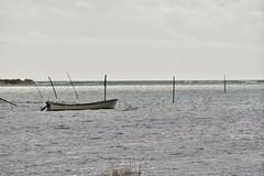 Marais salants de Fuzeta , sans soleil ! Portugal (jmollien) Tags: portugal maraissalants algarve bateau boat paysage landscape nikon mer water ocean atlantique minimalisme