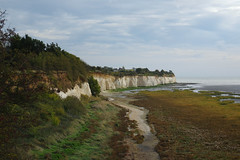Pegwell Bay to Broadstairs. An Autumn walk with Max. (favmark1) Tags: pegwell pegwellbay walk autumn kent undercliff