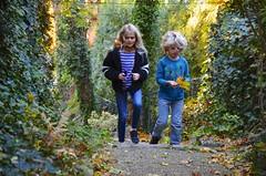 The Kids On The Secret Path (Joe Shlabotnik) Tags: november2018 foresthills violet fall everett autumn queens foresthillsgardens 2018 foliage afsdxvrzoomnikkor18105mmf3556ged