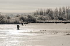 On first ice... (Woodmen19) Tags: russia kirovregion 2018 november autumn nature lake oldriverbed ice fishing fishermen landscape