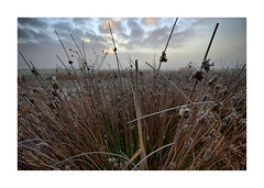Sunrise Waterdonken Breda 05 (cees van gastel) Tags: ceesvangastel canoneos550d clouds sigma1020mm landscape landschap luchten natuur nature nederland netherlands noordbrabant breda water winter waterdonkenbreda waterakkers wolken sunrise zonsopkomst mist horizon einder