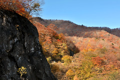 Nikkō (日光市) Town | Tochigi, Japan (Ping Timeout) Tags: nikkō 日光市 town city tochigi prefecture japan nikko north west season visit travel autumn fall outdoor 栃木県 unesco world heritage site nippon holiday 東京 日本 october 2018 vacation explore rock hill color colour tree forest leaves mountain light shadow terrain rough sky skies blue clear weather irohazaka route windy road hairpin turn scene scenery cliff serene